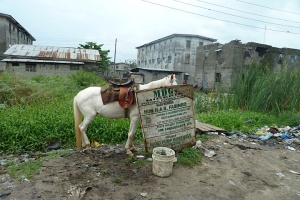 MDGs sign ironically placed in slum community under threat near Lagos.