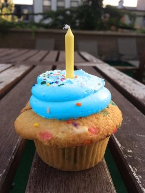 cupcake_nmapblue_birthday