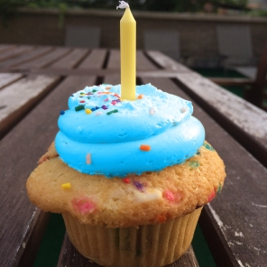 cupcake_nmapblue_birthday